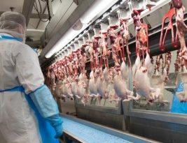 China diz que frango importado do Brasil testou positivo para o coronavirus